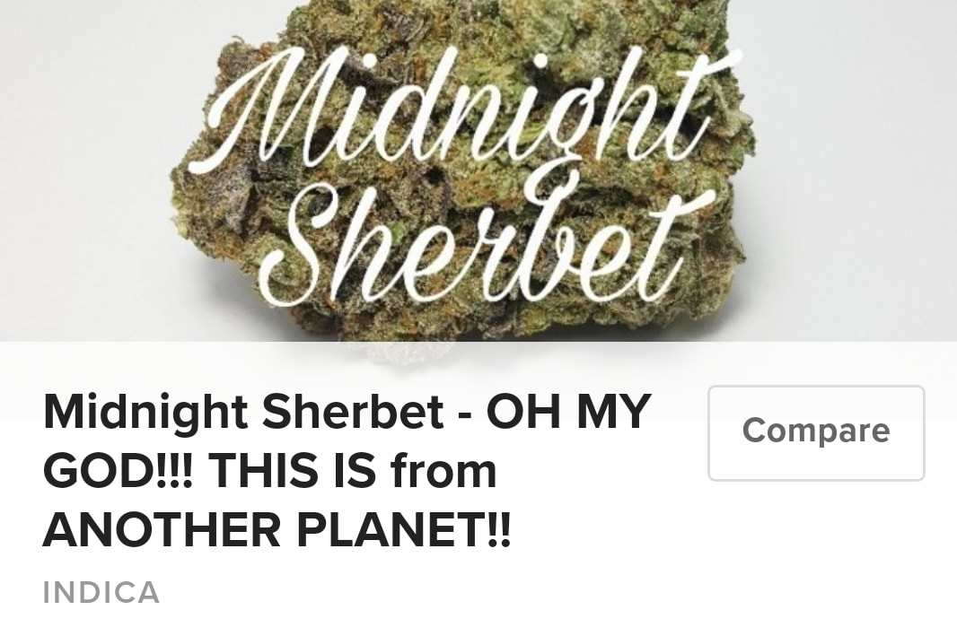 Midnight Sherbert