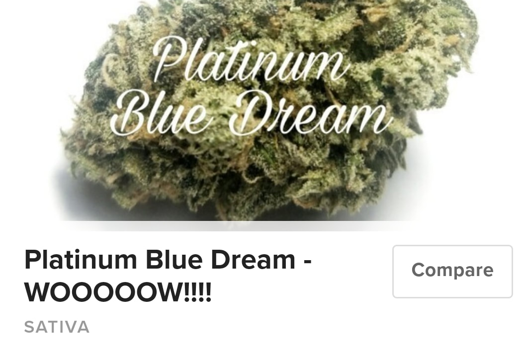 Platinum Blue Dream