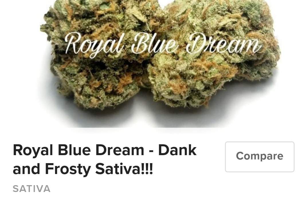 Royal Blue Dream